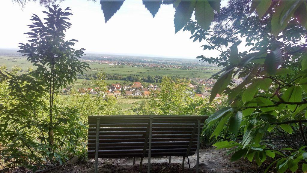 HeilSein-EinsSein Meditation & Kontemplation, zur Bewusstwerdung und Verwirklichung der Wahren Natur, Elvira Samarpita Mehl, Neustadt/Wstr. Pfalz